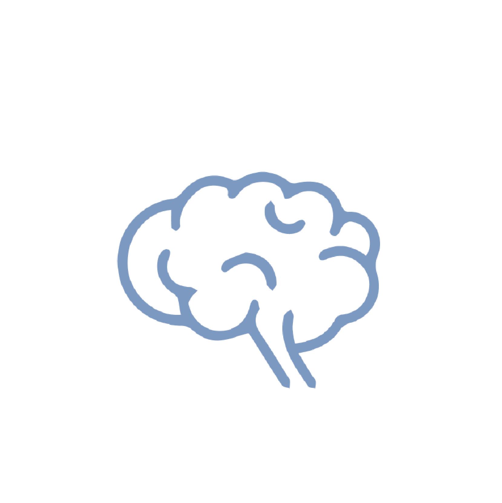 brein1